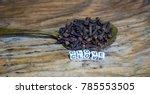 clove block letters in...   Shutterstock . vector #785553505
