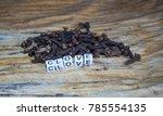 clove block letters in...   Shutterstock . vector #785554135