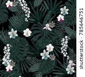 exotic tropical vector... | Shutterstock .eps vector #785646751