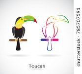 vector of toucan bird design on ... | Shutterstock .eps vector #785707591