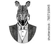 zebra horse animal wearing... | Shutterstock . vector #785710045