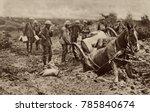 world war 1. british horse sunk ...   Shutterstock . vector #785840674