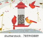 cute red northern cardinal bird ... | Shutterstock .eps vector #785943889