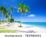 tropical beach with coconut palm | Shutterstock . vector #785980441