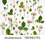 decorative pattern with light... | Shutterstock . vector #785981791