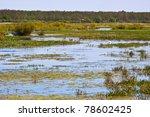 Biebrza Swamps National Reserve