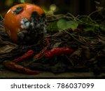 rotten tomato isolated | Shutterstock . vector #786037099