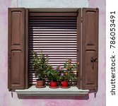 window with brown shutter and... | Shutterstock . vector #786053491