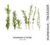 creative layout made of thyme... | Shutterstock . vector #786182605