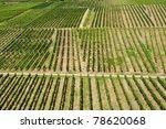 vineyards in germany | Shutterstock . vector #78620068