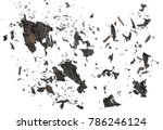 Burned  Charred Paper Scraps...