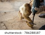 traditional craftsman carving... | Shutterstock . vector #786288187