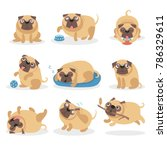 cute funny pug dog set  dog in...   Shutterstock .eps vector #786329611