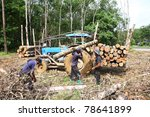 man working to cut and move... | Shutterstock . vector #78641899