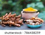 turmeric root  curcuma longa ... | Shutterstock . vector #786438259
