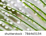 background of water drops on... | Shutterstock . vector #786465154