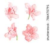 Blossoms Light Pink...
