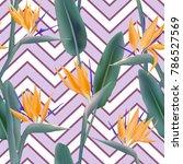 bird of paradise tropical... | Shutterstock .eps vector #786527569