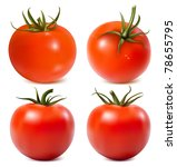 tomato with water drops. photo... | Shutterstock .eps vector #78655795