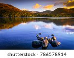 autumn evening at ulswater ... | Shutterstock . vector #786578914