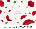 falling red rose petals and... | Shutterstock .eps vector #786593107