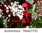 Stock photo white flowers and red roses a combination of beauty and subtle naturalness 786627751