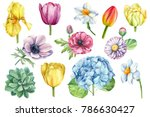 Spring Flowers Set Watercolor ...