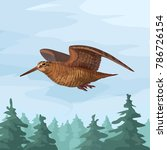 vector wild realistic wooscock... | Shutterstock .eps vector #786726154