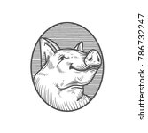 sketch of pig. engraved pig and ... | Shutterstock .eps vector #786732247