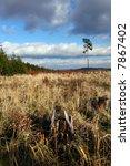autumn countryside | Shutterstock . vector #7867402