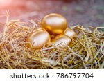Golden Eggs On Rice Straw.