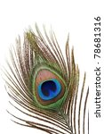 Detail Of Peacock Feather Eye...