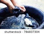 process dye fabric  indigo... | Shutterstock . vector #786837304