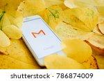 chiangmai  thailand   january5  ... | Shutterstock . vector #786874009