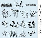 Vector Flower And Grass...