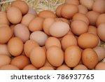 Weekly Market Eggs  Costa...