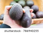 Small photo of Avocado also refers to the Avocado tree's fruit, which is botanically a large berry containing a single seed. Avocados are very nutritious and contain a wide variety of nutrients.