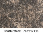 this is texture on the surface... | Shutterstock . vector #786949141