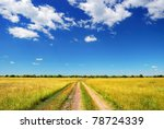 country road in summer field... | Shutterstock . vector #78724339