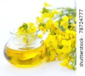 fresh rapeseed oil in a bottle - stock photo