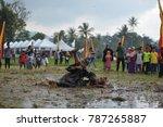 padang panjang  west sumatra ... | Shutterstock . vector #787265887