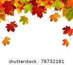 Border Frame Of Colorful Autumn ...