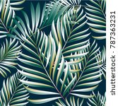 pattern of tropical palm ...   Shutterstock .eps vector #787363231