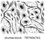 root and tuberous vegetables ... | Shutterstock .eps vector #787406761