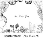 root and tuberous vegetables ... | Shutterstock .eps vector #787412875