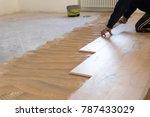 renovation of an apartment ...   Shutterstock . vector #787433029