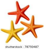 starfishes. vector. | Shutterstock .eps vector #78750487