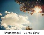 trasimeno lake spring | Shutterstock . vector #787581349