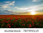 field of poppies against the... | Shutterstock . vector #787593115