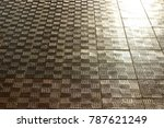 tiled pavement  road. autumn... | Shutterstock . vector #787621249